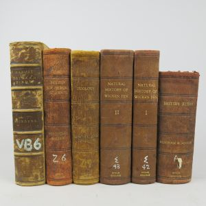 Leather bindings (Lot 4)