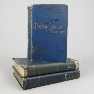 Cloth bindings (Lot 11)