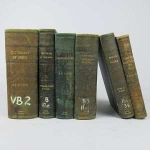 Leather bindings (Lot 6)