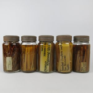 Pickled Plant/root specimens x 5