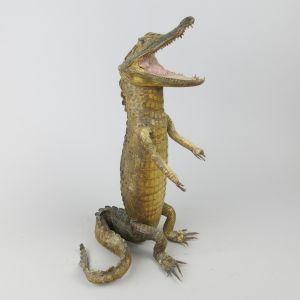 Crocodile standing, no.2